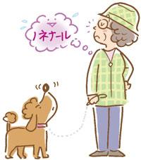 女性の加齢臭は50~60代から発生しやすくなります