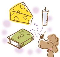 加齢臭は、チーズ・ろうそく・古本の臭いなどに例えられます